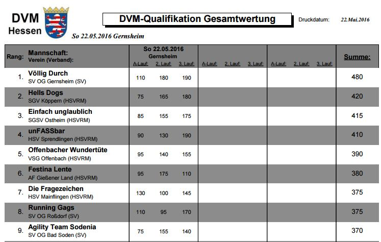 DVM Tageswertung